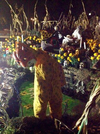 Ofrenda a Mictlán Mexico City Mexico Skull Dia De Los Muertos Festival Traditional Sculpture Ofrenda al Dia de Muertos Eye4photography  EyeEm Best Shots Eyemmexico