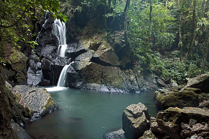 Aceh Beauty In Nature Day Environment Flowing Flowing Water Forest Green Idyllic Motion Nature Non-urban Scene River Rock Rock - Object Rock Formation Scenics Stream Tranquil Scene Tranquility Travel Destinations Tree Water Water Fall Waterfall