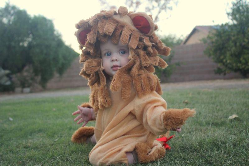 Portrait of cute baby girl wearing costume kneeling on land