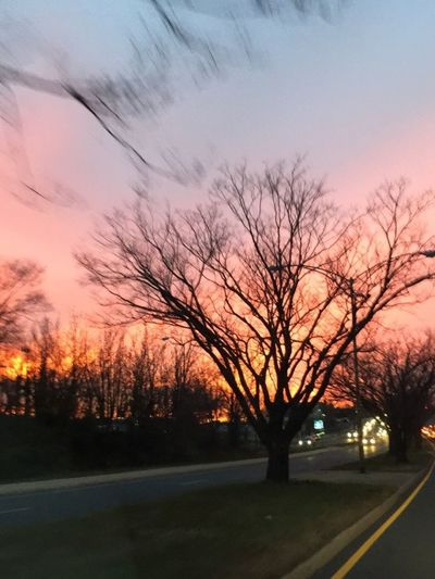 Sunset Tree Road Orange Color Sky Silhouette Nature No People Beauty In Nature Bare Tree Outdoors Scenics EyeEmNewHere 3XSPUnity