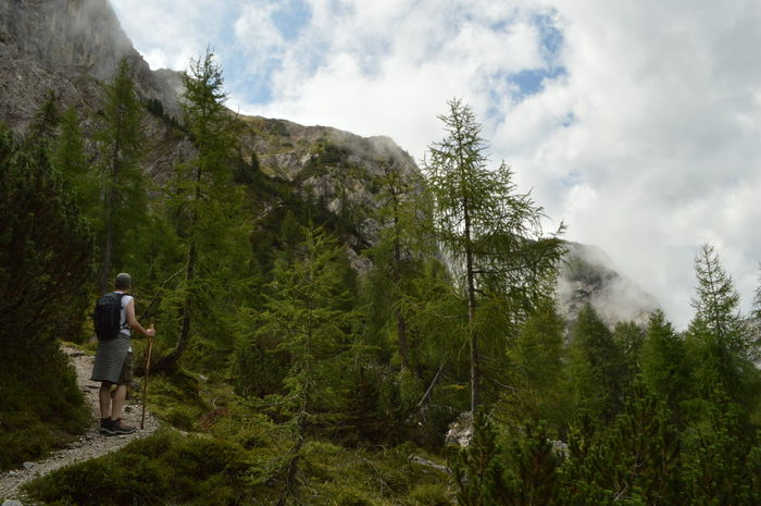 Adult Adventure Beauty In Nature Cloud - Sky Day Forest Full Length Growth Hiking Landscape Leisure Activity Mountain Mountain Range Nature One Man Only One Person Outdoors Real People Rear View Scenics Sky Standing Tree Vacations Walking Lost In The Landscape