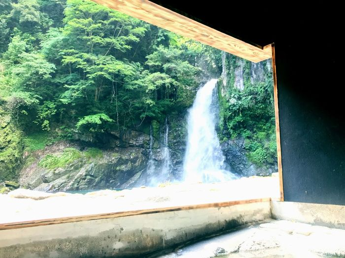 Onsen Plant Tree Water Nature Day Motion Architecture No People Sunlight Outdoors Green Color Waterfall Power In Nature Wall Beauty In Nature