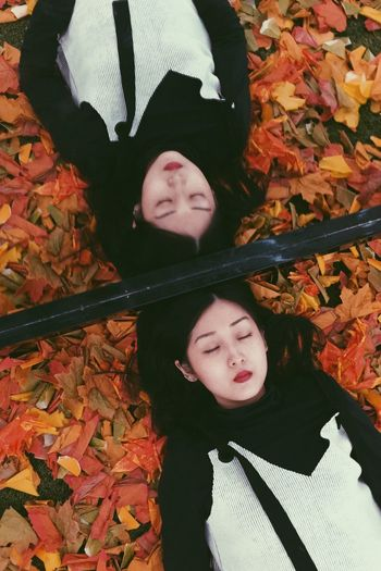 Sleepy Lying Down Leaves Maple Autumn PhonePhotography ThatsMe