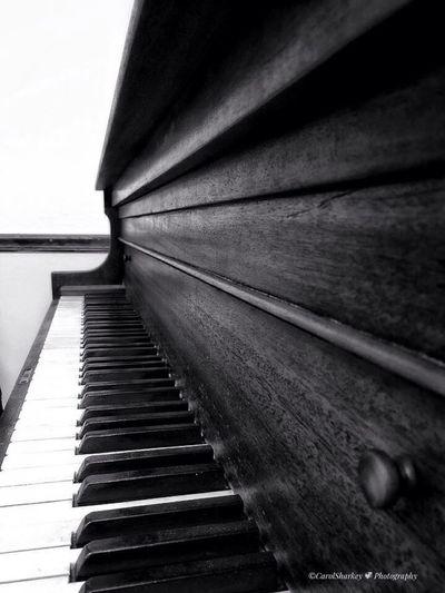 Piano Piano Keys Piano Keyboard  Blackandwhite CarolSharkeyPhotography