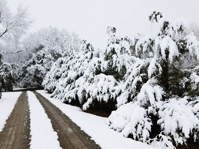 The Road to Home Snow Cold Temperature Winter Landscape Outdoors Nature No People Mountain Tree Day Scenics Rural Scene Beauty In Nature Sky