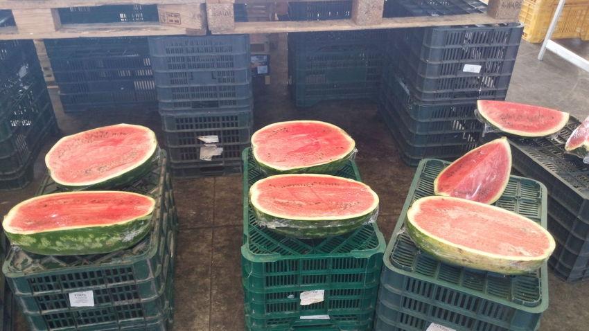 Meloni d'acqua al mercatino watermelon on the market Melone Fresh Food Green Color Red Color Anguria Mercatino