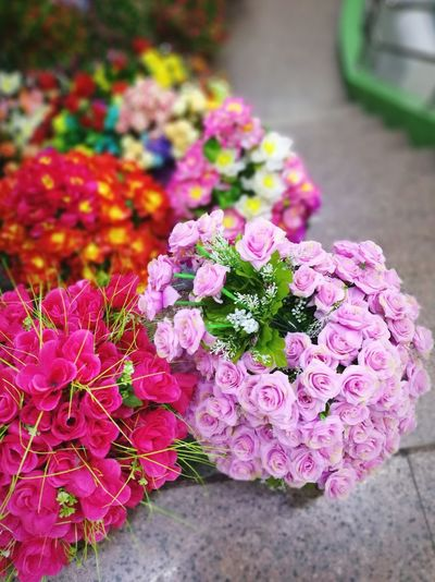 In Bloom Flower Multi Colored Colorful Freshness Close-up No People Flower Head Beauty In Nature Plant Nature Trackthebloom