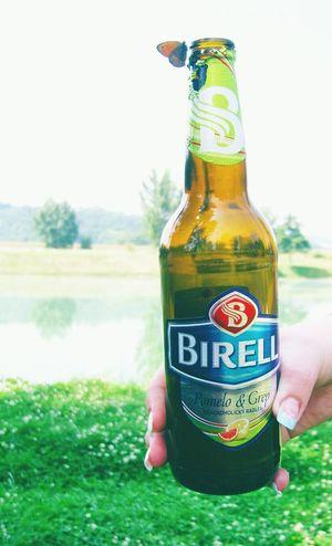 Beer Butterfly Birell Trip Travel Pomelo Grep Fruits Fruit Beer Slovakbeer