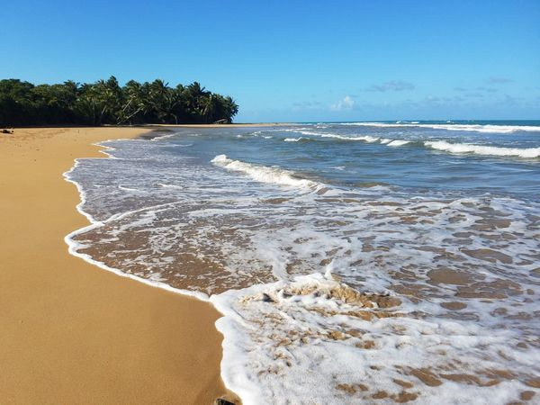 Beach Beauty In Nature Blue Clear Sky Day Horizon Over Water Nature No People Outdoors Sand Scenics Sea Sky Tranquil Scene Tree Water Wave Samsung Galaxy S7 Check This Out Puerto Rico