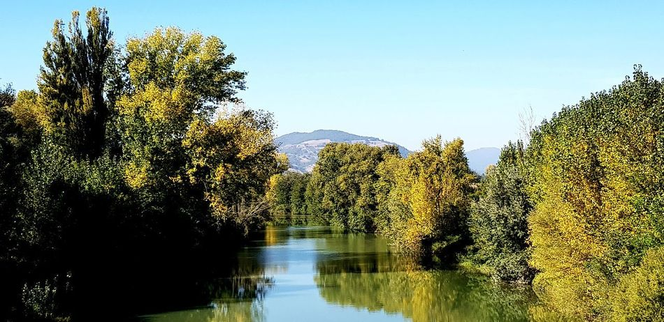 fiume Tevere: autunno e natura Fiume Fiume Tevere Natura Nature Nature Photography Autunn Autumn colors Autunno Autumn Colors Colori Landscape Paesaggio Autunno🍁🍁🍁 Fogliediautunno Foglieautunnali Tranquility Relaxing Tranquil Scene Relaxing Moments EyeEmNewHere Paesaggio Panoramic Photography Lake View Panoramic Panorama Umbria, Italy Tree Water Reflection Clear Sky Sky