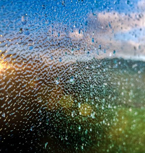 Water Glass -