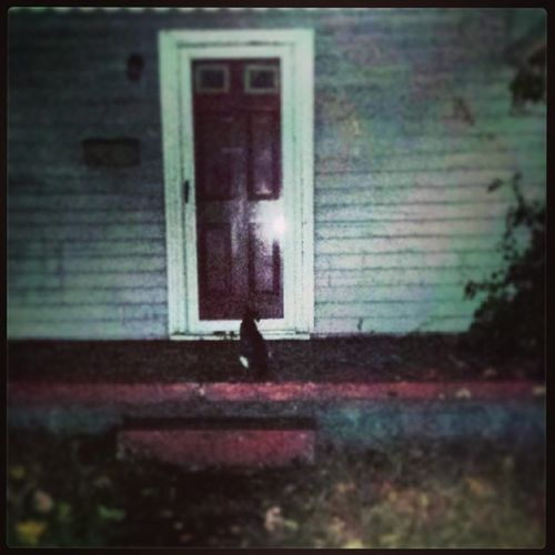 Coolest pic! BLackCat waiting on the steps of a Abandedhouse on Halloweennight . Could not have staged a better pic. Samhain familiar welcomevisitor