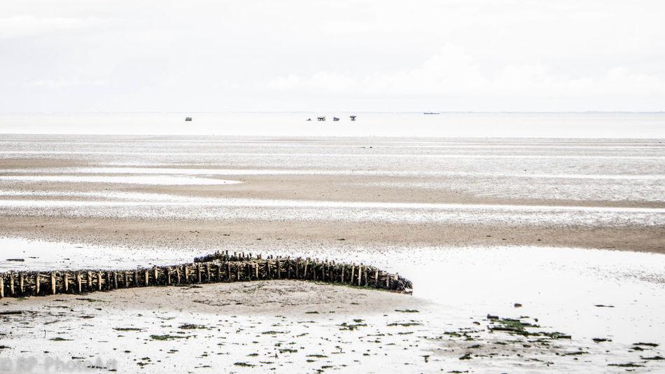 The Beauty Of Fall Autumn Tideland Mudflat North Sea Sylt White Sky Seaside Minimalobsession