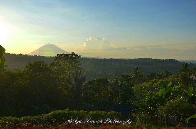 Gunung Agung di kejauhan Agushariantophotography Gunung Gunungagung Baliandbeyond Bali Sunrise Hijau Hillside Farm Balihighlights