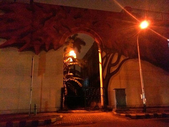 Delhidiaries Wall Art Night Photography Treepainting EyeEm Gallery Showcase March