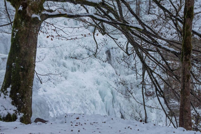 Cascade Jura Franchecomte Cold Temperature Winter Nature Beauty In Nature D7200 Snow Tourism