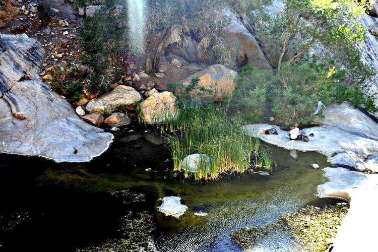 Melancholic Landscapes Mother Nature Peaceful