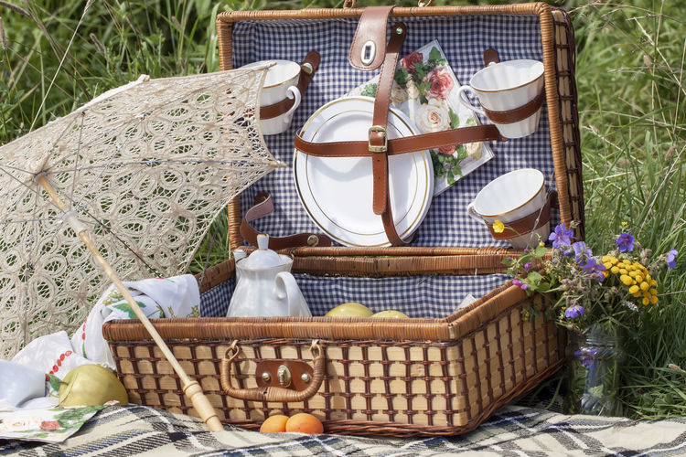 Set for a romantic picnic outdoors, in nature in summer, , rustic lunch Food Day Freshness Table Plant Container Basket Flower Flowering Plant Food And Drink Nature No People Wicker High Angle View Set Picnic Romantic Rustic Relaxing Relaxation Vacations Umbrella