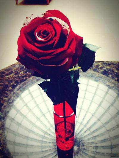 Rosé Engagement Happyday