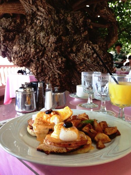 Breakfast HauTreeLanai EGGBENEDICT