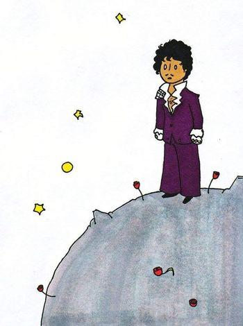 Purple Prince  Overtherainbow