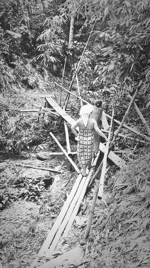 Bamboo bridge.. Bamboobridge Bidayuh VillagePeople