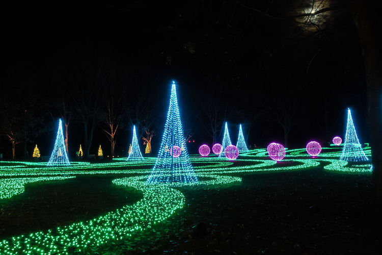 Lawnscape - Illuminated Night Illuminated Green Color Nature No People Plant Lighting Equipment Tree Glowing Park Sky Outdoors Land Creativity Park - Man Made Space Water Grass Multi Colored Decoration Light