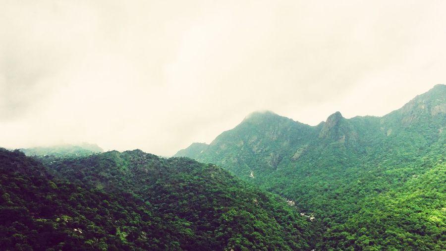 Landscape Mountain Range Foggy Morning Green Green Green!  Biodiversity Biosphere Bioluminescent Vegetation Mount Covered Foggy Mist Madness Morning Freshness New Place Chilling