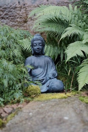 Taking Photos X-T1 XF56mmAPD Xshooter Buddha Statue Buddha Garden FUJIFILM X-T1 Trädgården Fujinon56mm1.2