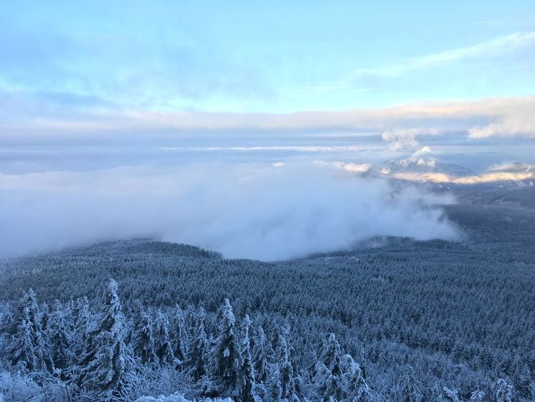 Nature Landscape Winter Cloud - Sky Fog Photography Photooftheday Picoftheday Like4like Beauty In Nature Scenics Sky Snow Forest Traveling Home For The Holidays