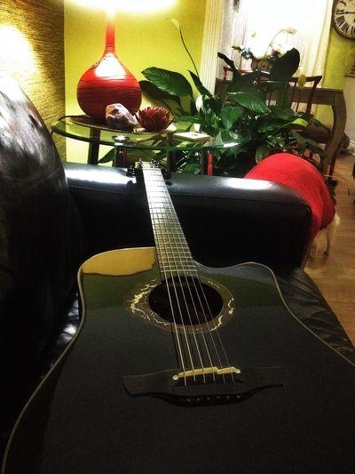 Guitarist guitar Takamine Acoustic