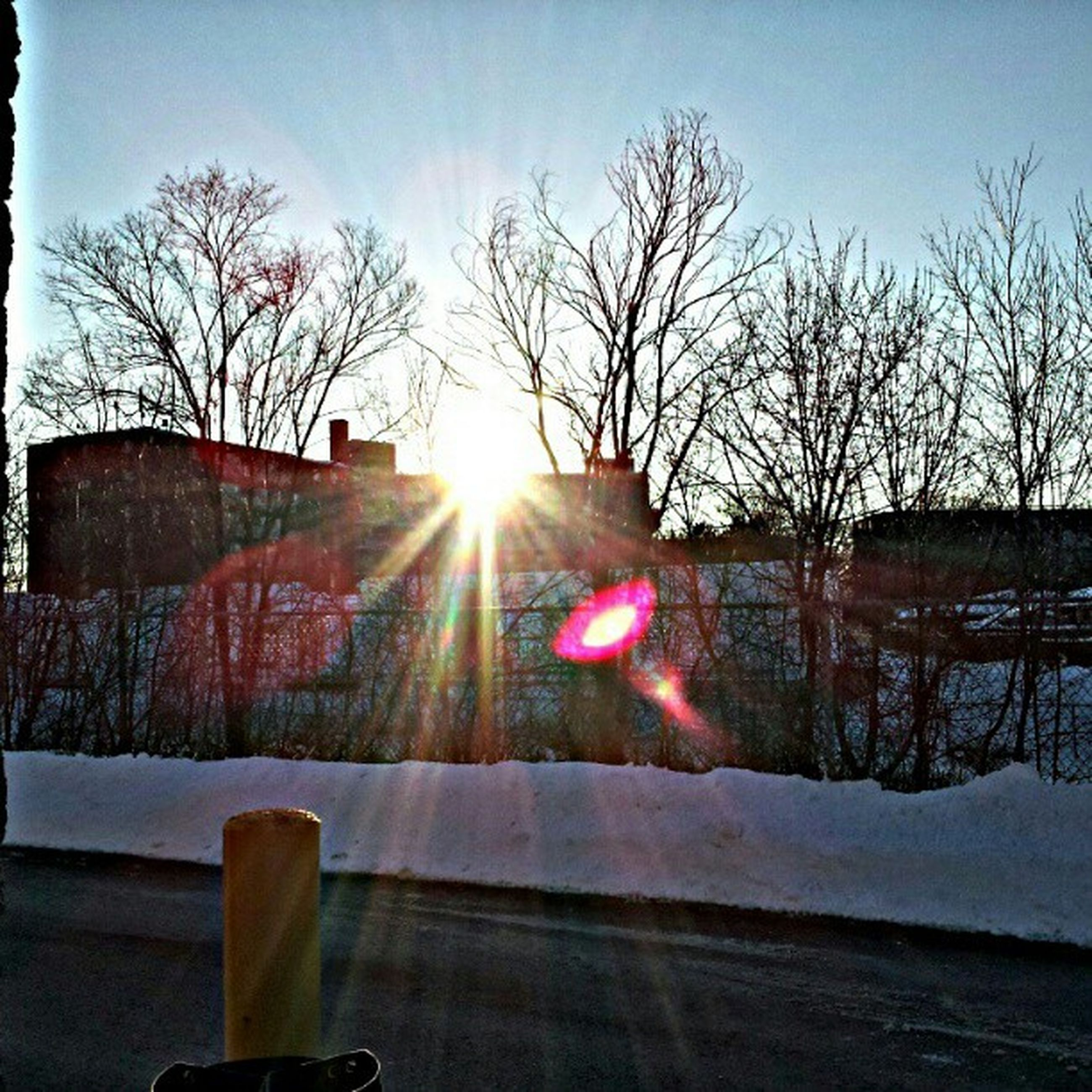 sun, bare tree, tree, snow, sunlight, winter, sunset, sunbeam, lens flare, cold temperature, sky, nature, tranquil scene, tranquility, branch, silhouette, beauty in nature, scenics, landscape, no people