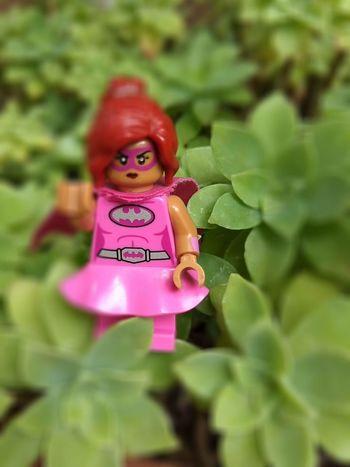 Lego. Chicas al al poder! Legophotography Lego Minifigures Legoland Legowonderwoman Mujeres Del Mundo Doll Creativity Historia Personal Naturaleza Pink Color Tree Communication Text Close-up