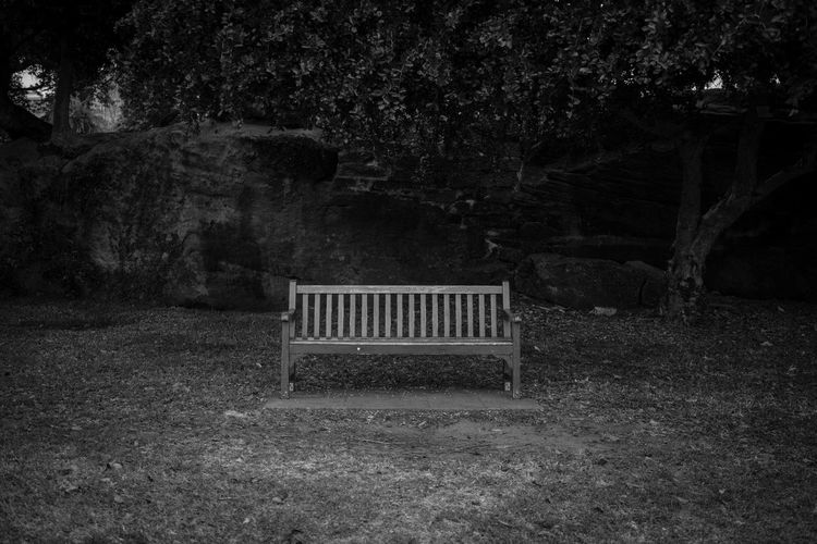 Relax, Take a seat Bench Blackandwhite Botanical Gardens Chair Garden Monochrome Photography Nostalgia Outdoors Rock Sydney, Australia Take A Seat Trees Wooden Bench