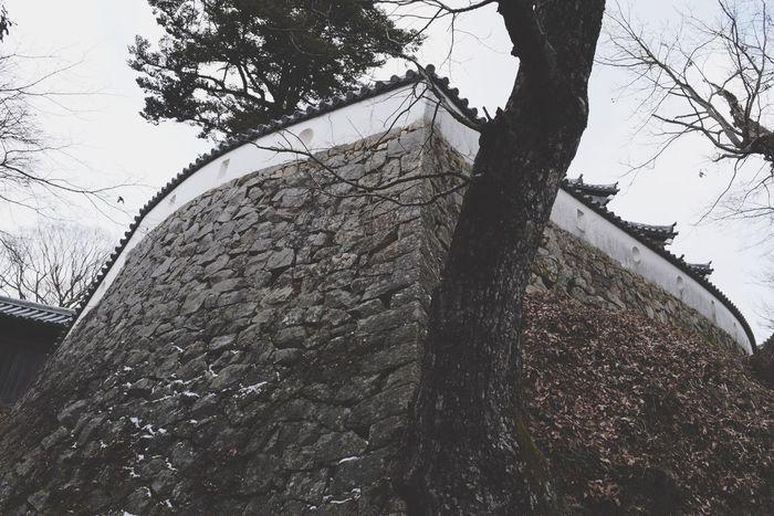 Walls Japan Okayama Deformation Black And White Trees Blackandwhite Castle