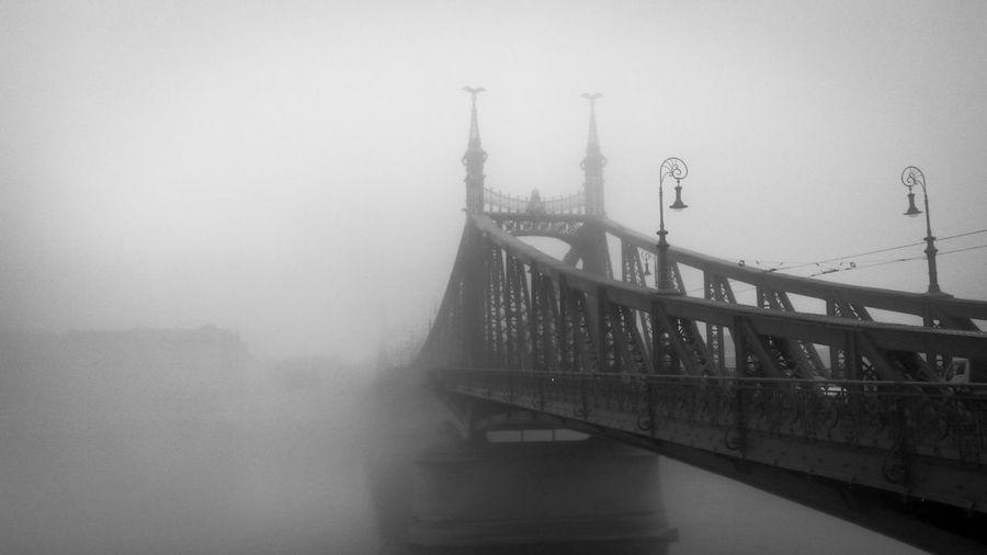 Blackandwhite Bridge In Fogg Bridge On Danube Fog_collection Foggy Morning