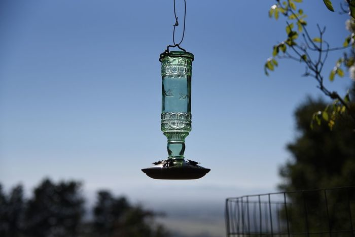 Bird Feeder Bird Feeders Bird Feeder Hanging Glass