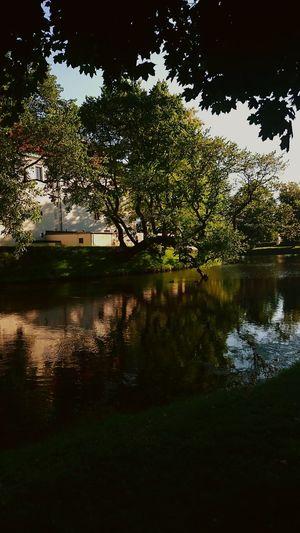 Enjoying Life Green Water Relaxing Castle