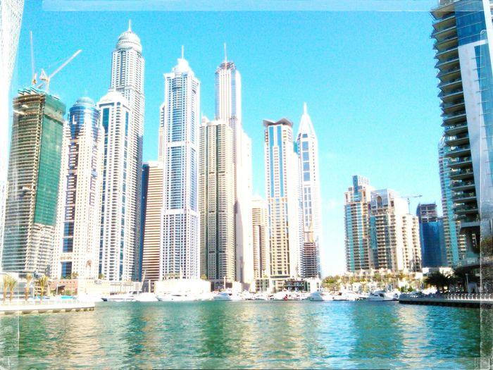Hello World Taking Photos Cheese! Hot_shotz EyeEm Best Shots Roar ♥ Skyscrapers Good Day :)