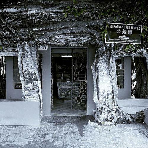 Senggarang,Tanjungpinang
