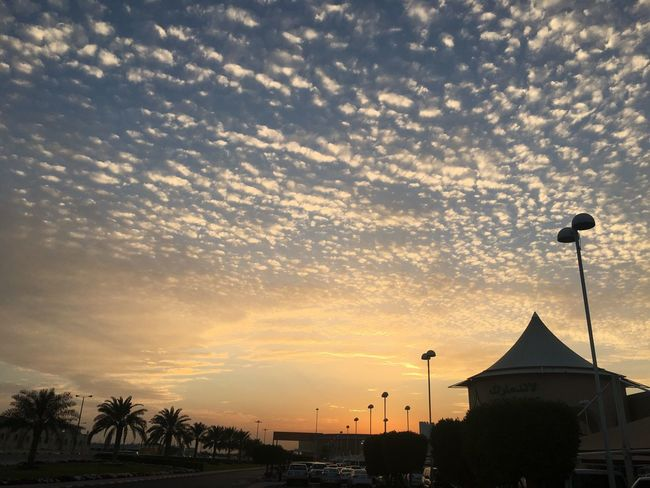 Landscape_photography Doha,Qatar Doha#City#❤ Sunset Built Structure Architecture Building Exterior Sky Silhouette Cloud - Sky No People Tree Palm Tree Outdoors Travel Destinations Beauty In Nature Nature City Day