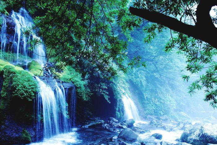 Rain Fog Foggy Waterfall Nature 山梨 滝 霧