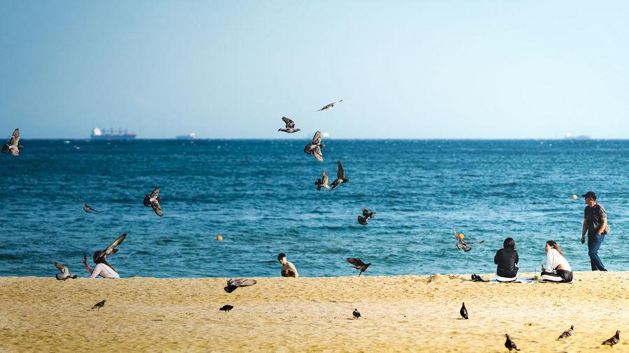 Busan Beach Sea