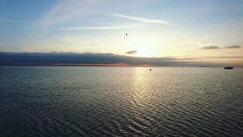 Thames Southend On Sea Beach Sky Water Nature Outdoors No People Day Sunset