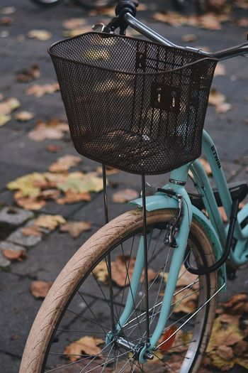 Fall-ing apart The Week on EyeEm Eye4photography  EyeEm Selects EyeEm Best Shots Details Autumn colors Autumn Leaf Bicycle Transportation Focus On Foreground Land Vehicle No People Mode Of Transportation Metal Street Stationary Close-up Wheel Outdoors Footpath Still Life Bicycle Basket