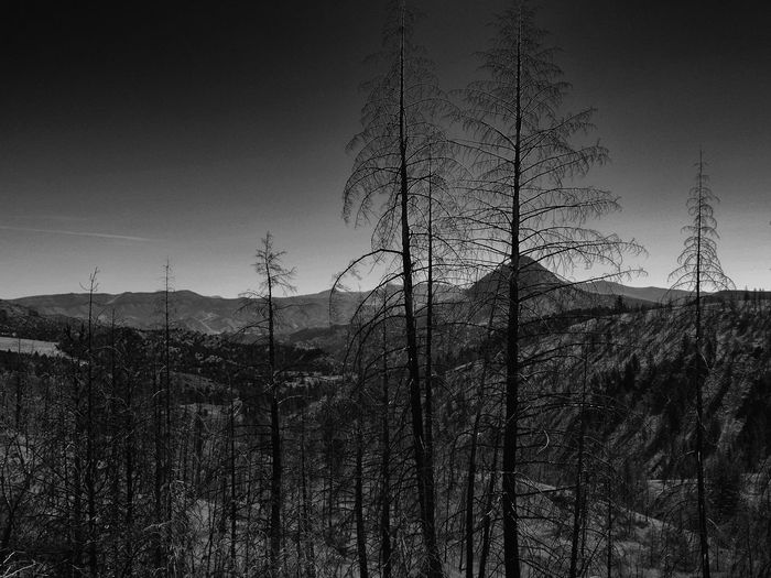 Black And White Landscape Mountain View Beauty In Nature Black And White Blackandwhite Landscape Mountain Range Mountains And Sky Tree Trees And Sky