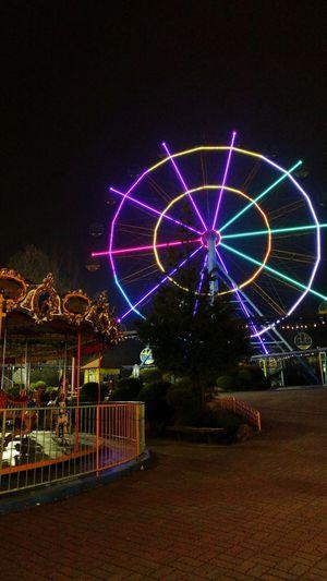 Themapark Ferris Wheel Merrygoround