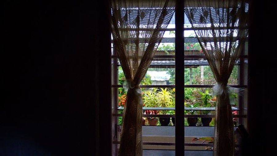• Window • Don't stay in the box. Look outside, you will see the difference. Lumiaphotography Lumia830 Mobilephotography Window ShotOnMyLumia  Nban Rawer