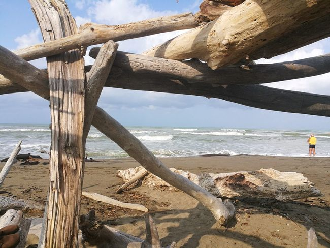 l'uomo ed il mare.. Contemplazione Trees And Nature WoodLand Onde Point Of View Acquarello Elementi Naturali Water Sea Beach Sand Sky Horizon Over Water