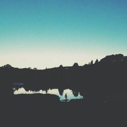 Beautiful Sunset Fun Night Late Night Swim